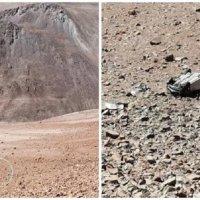 Una tucumana de perdió la vida al volcar con su vehículo en una ruta de Chile